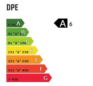 Qu'est ce que le DPE?